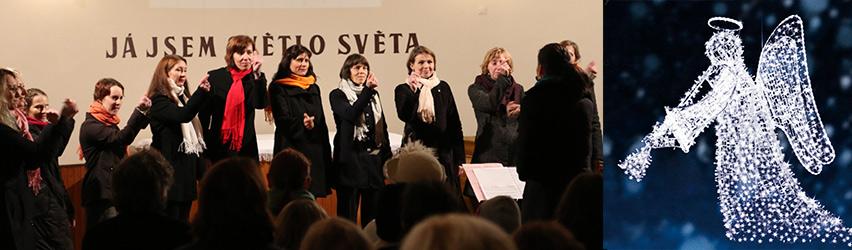Benefiční koncert pro Boženku