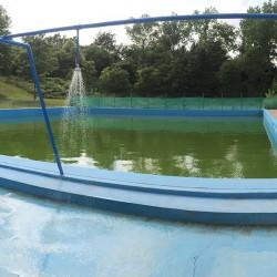 Plovárna - plný bazén
