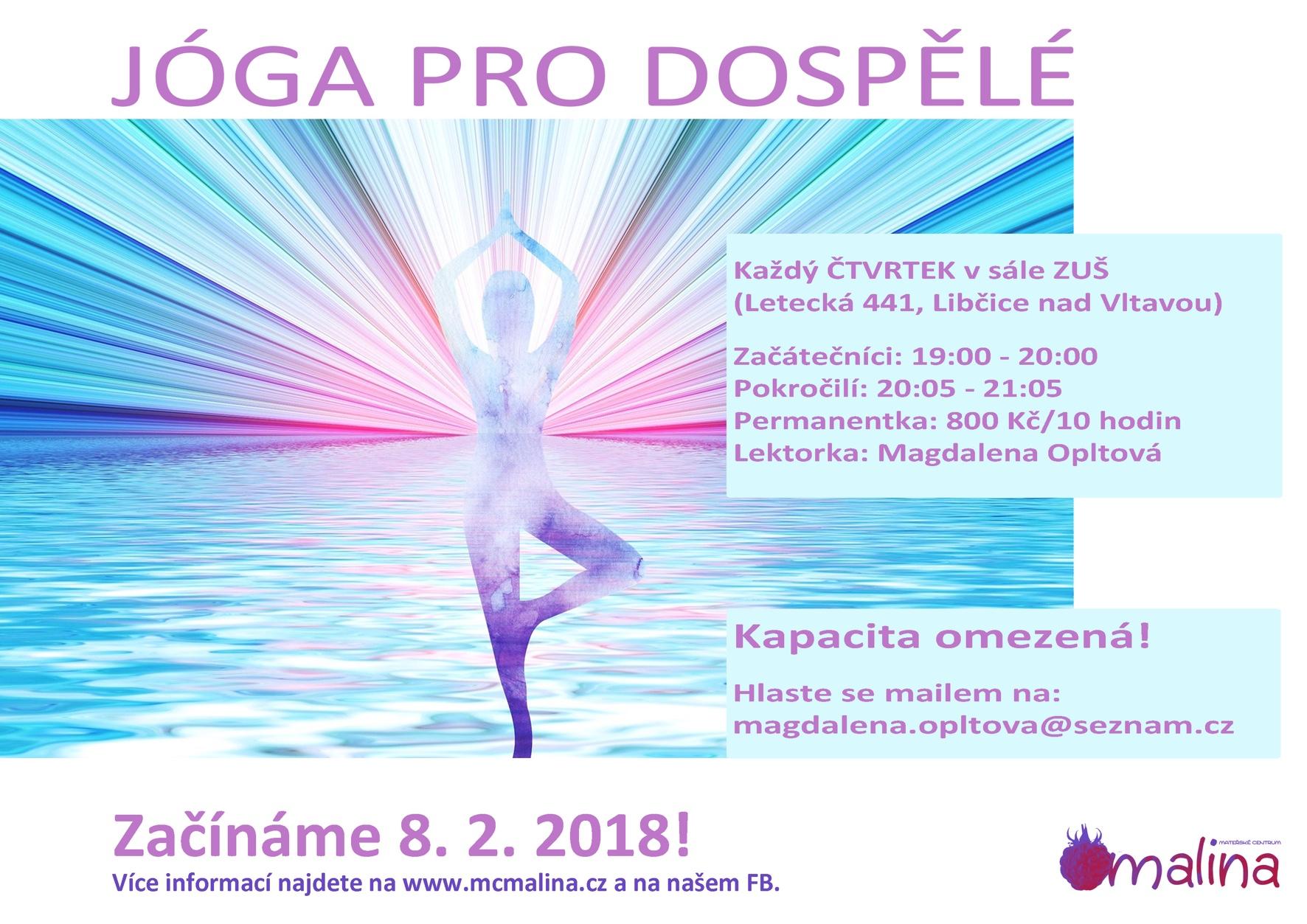 Adult yoga 2018