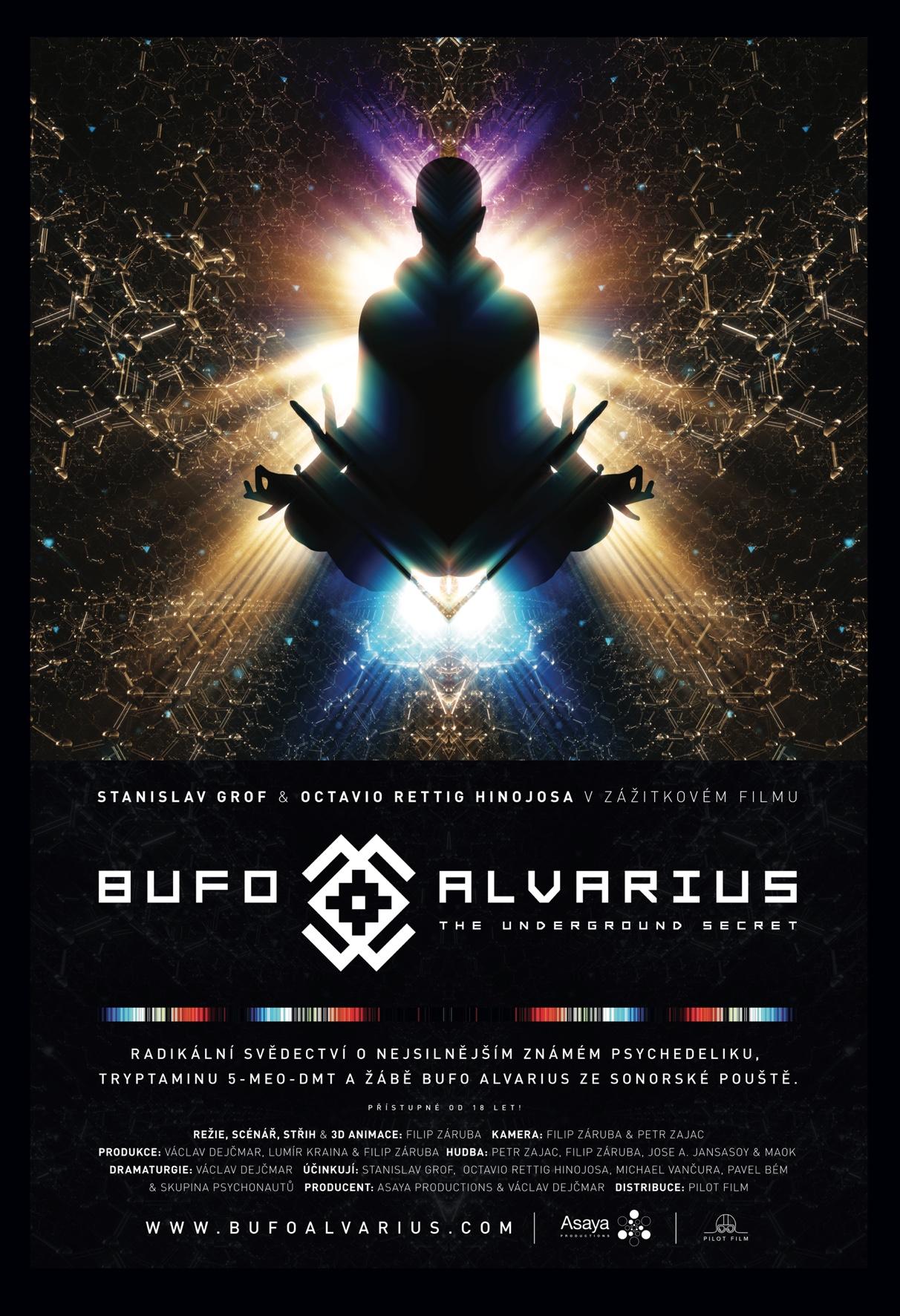 Kino Kotelna: Bufo Alvarius