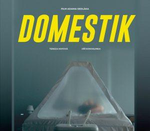 Kino Kotelna: Domestik @ Kino Kotelna